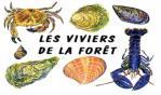 Logo lvdlf